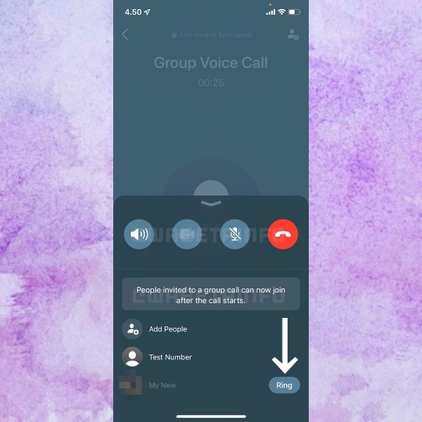 Nuevo diseño en las videollamadas de WhatsApp, con botones en la parte inferior y una lista de los contactos que participan.- Blog HolaTelcel