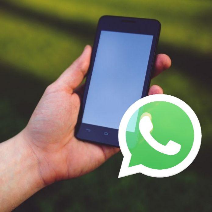 ¿Cómo recuperar números eliminados en WhatsApp?- Blog Hola Telcel