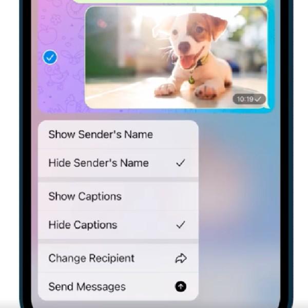 reenviar mensajes en telegram 8.0 sin limite de espectadores - Blog Hola Telcel