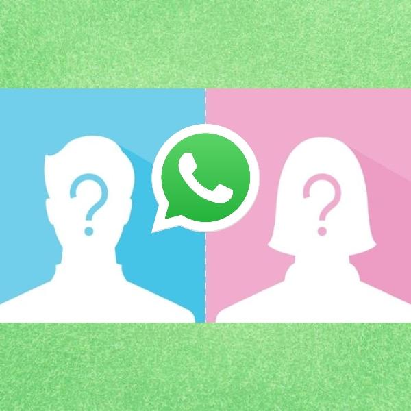 WhatsApp integrará una nueva función para ocultar la foto de perfil de ciertos contactos.- Blog Hola Telcel