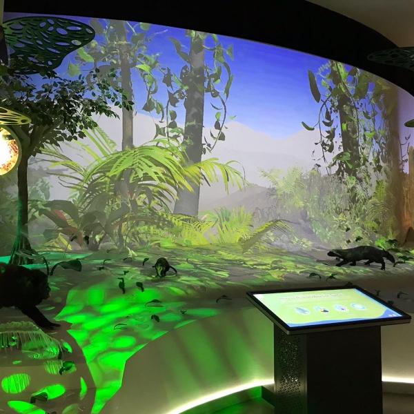 La Biblioteca Digital TELMEX- Telcel es un espacio dotado de la más alta tecnología.- Blog Hola Telcel