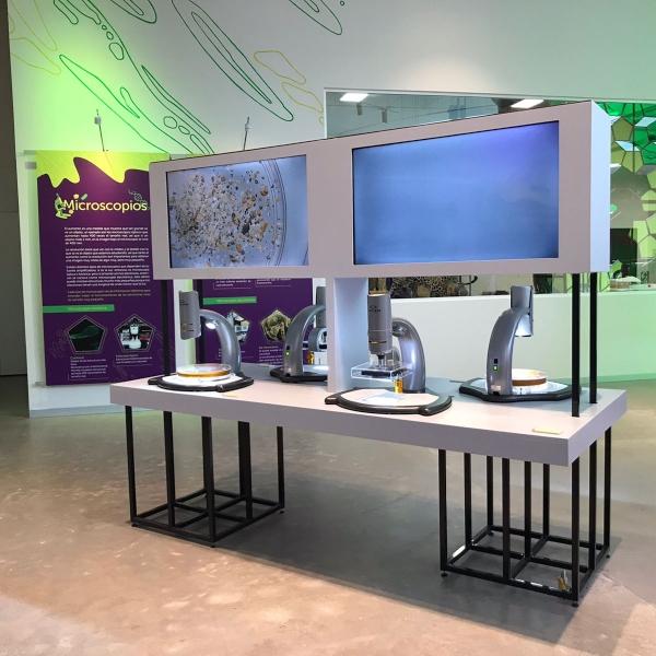 Pabellón de la Biodiversidad: el nuevo espacio creado por Fundación Carlos Slim.- Blog Hola Telcel