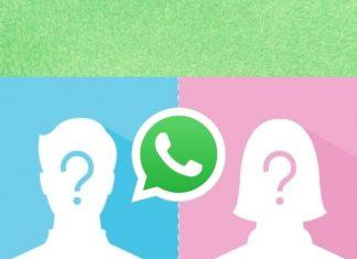 WhatsApp ahora te permitirá ocultar tu foto de perfil a ciertas personas.- Blog Hola Telcel